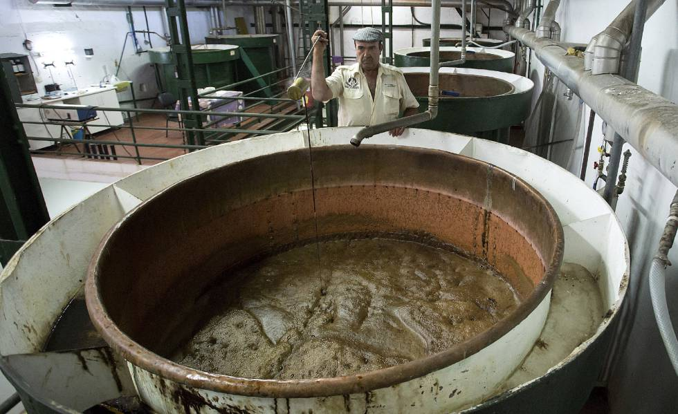 Instalaciones de la fábrica de miel de caña de Nuestra Señora del Carmen de la localidad en Frigiliana.