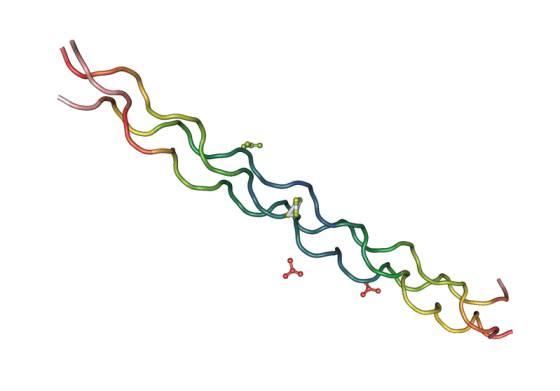 A tríplice hélice do colágeno