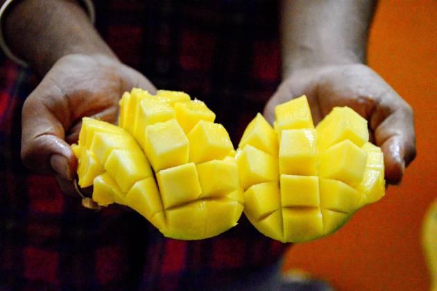 para que nos sirve el mango en nuestro cuerpo