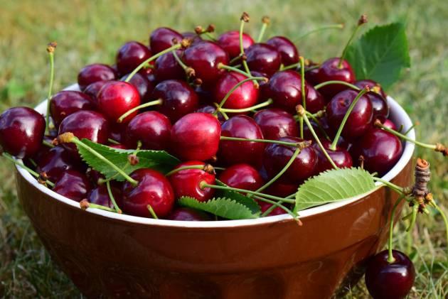 Resultado de imagen para cerezas