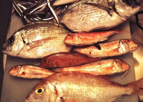 La Guía Definitiva De Las Temporadas De Pescados Y Mariscos El Comidista El País