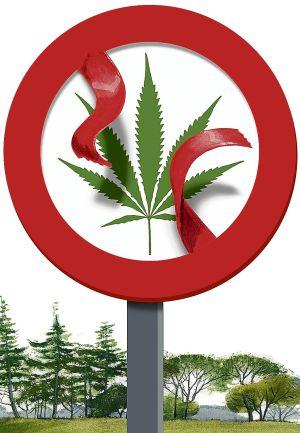 La marihuana sale del armario