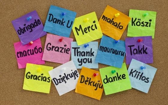 en realidad podemos traducir del español a 42 idiomas