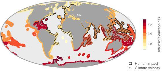 Una de cada seis especies se extinguirá por el cambio climático