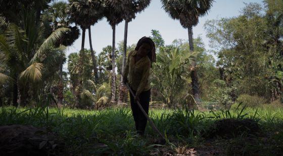 Violencia de género en Camboya - Ey, una mujer camboyana, trabaja junto a su casa en la provincia de Tboung Khmom.