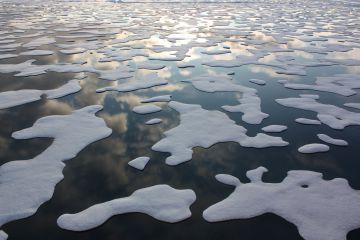 Los expertos temen las consecuencias del deshielo en el Ártico.