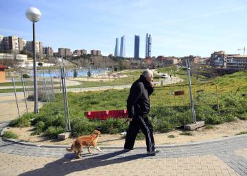 Madrid plans fines of €751 and up for leaving dog droppings on the street