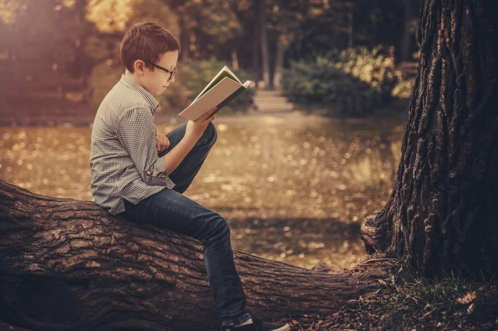 Niño leyendo un libro en el parque rn rn