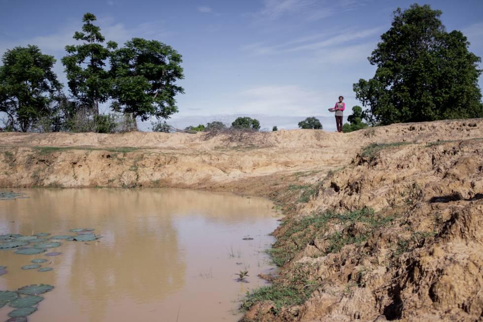 Sequía en Camboya - Los alrededores de la casa de Phaly permanecen secos en plena época de siembras. ANA SALVÁ