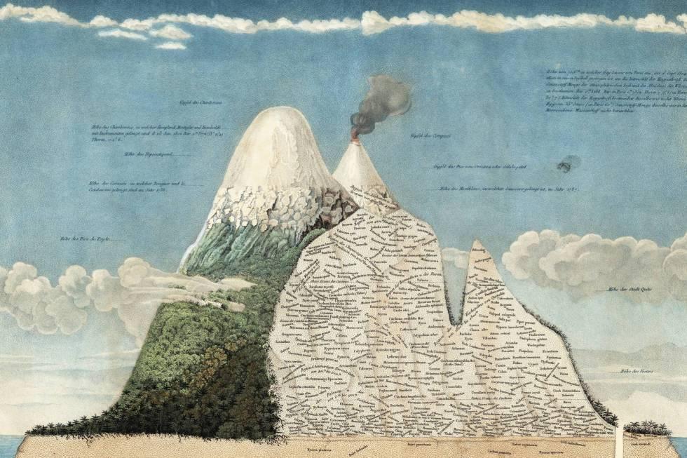 Detalle del uno de los dibujos de Humboldt.