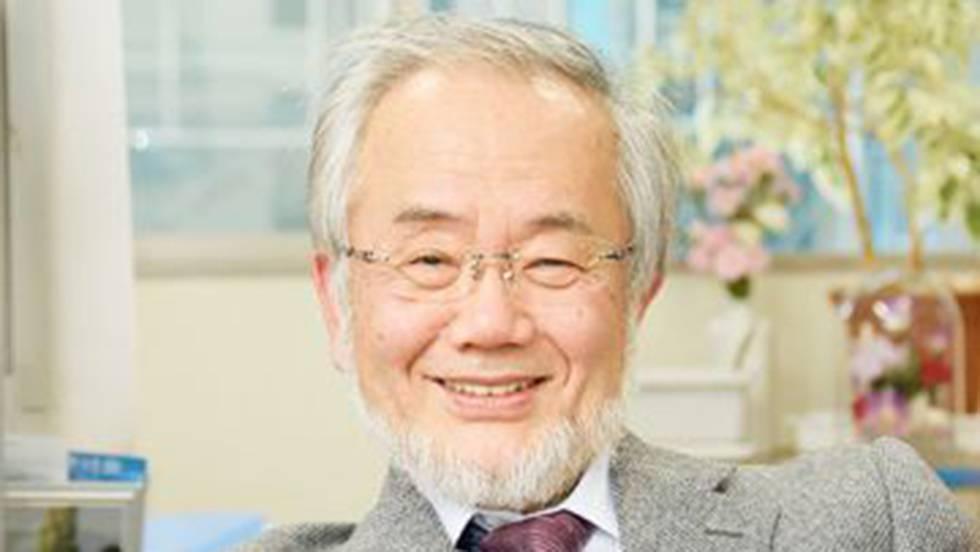 Yoshinori Ohsumi gana el premio Nobel de Medicina 2016 por iluminar el sistema de reciclaje del cuerpo
