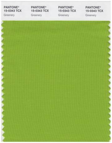 el verde el tono elegido por pantone como el color de