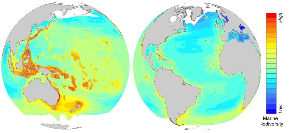 O mapa mostra as regiões com maior riqueza de espécies, em vermelho, e as que têm menos biodiversidade.