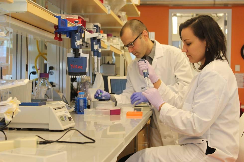 Los genetistas Yaniv Erlich y Dina Zielinski crean copias de moléculas de ADN.