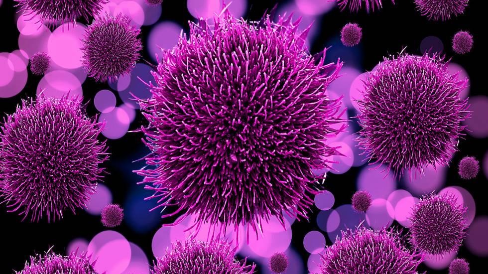 Los virus plantean un problema a los biólogos porque no tienen células, por lo que no forman parte de ninguno de los tres grupos principales de seres vivos.