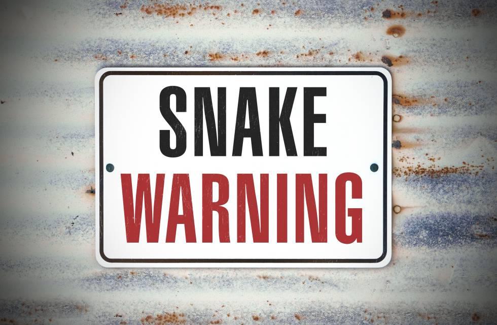 Taipan Bichos Asesinos La Serpiente Mas Venenosa Del Mundo Blog