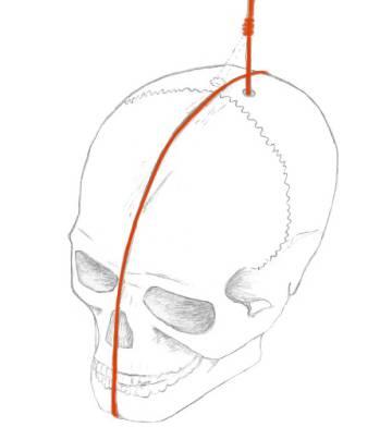 Recreación de la forma de colocar el cráneo