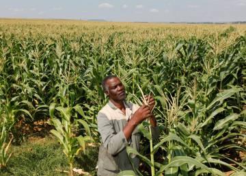 La epidemia de usurpación de tierras en África