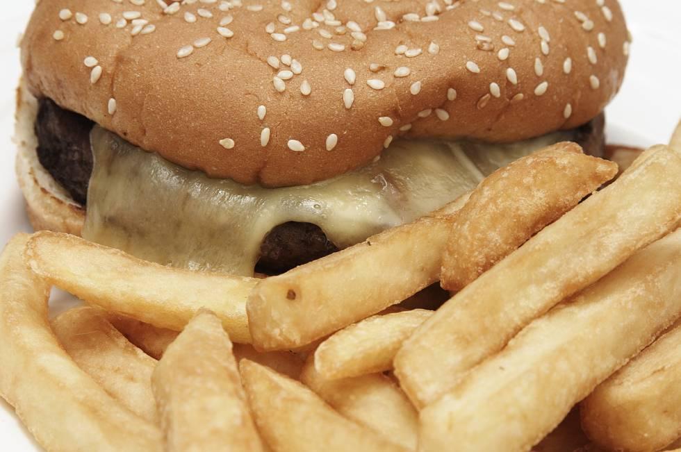La comida basura modifica el cerebro y aumenta el apetito