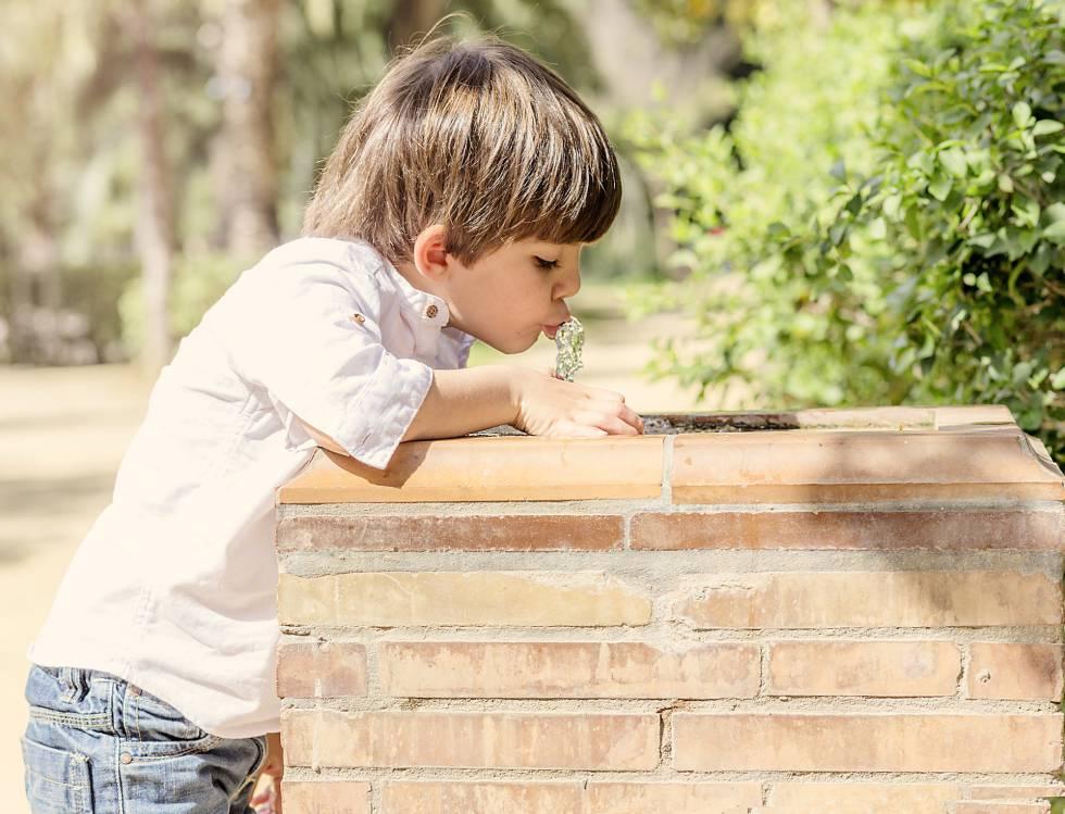 ¿Cuánta agua debe beber tu hijo al día? Dos litros no es la respuesta