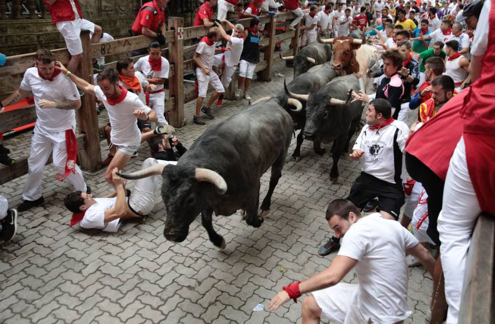 Image result for BULL RUNNING