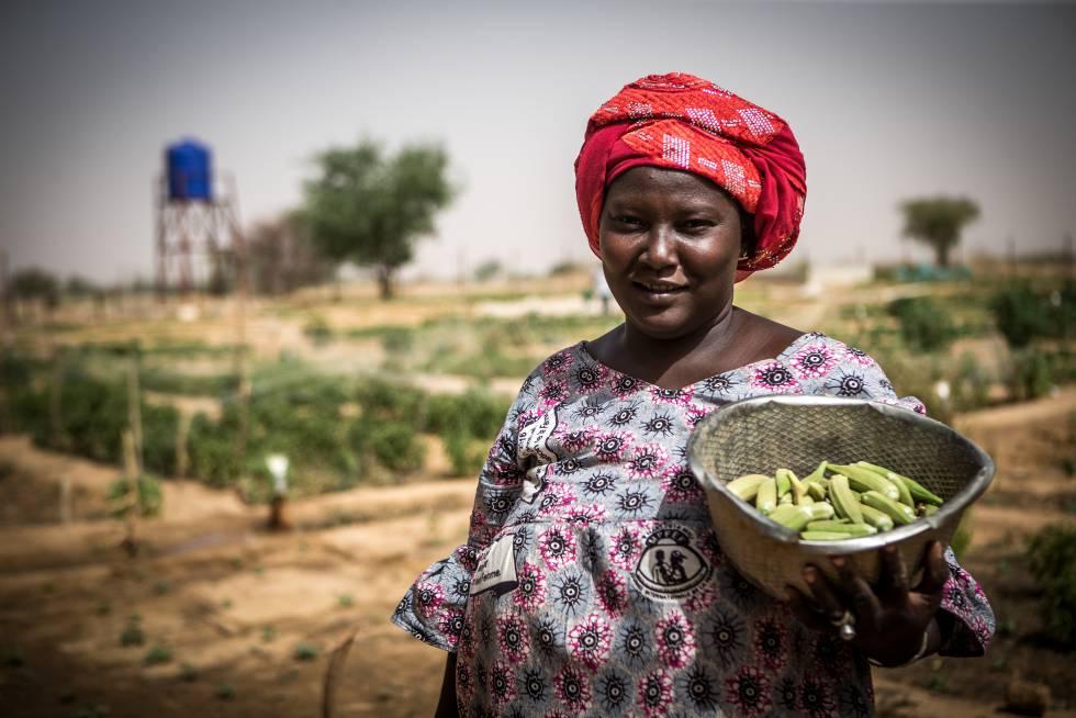 La ONU en Malí implementa un programa de apoyo a campesinas.