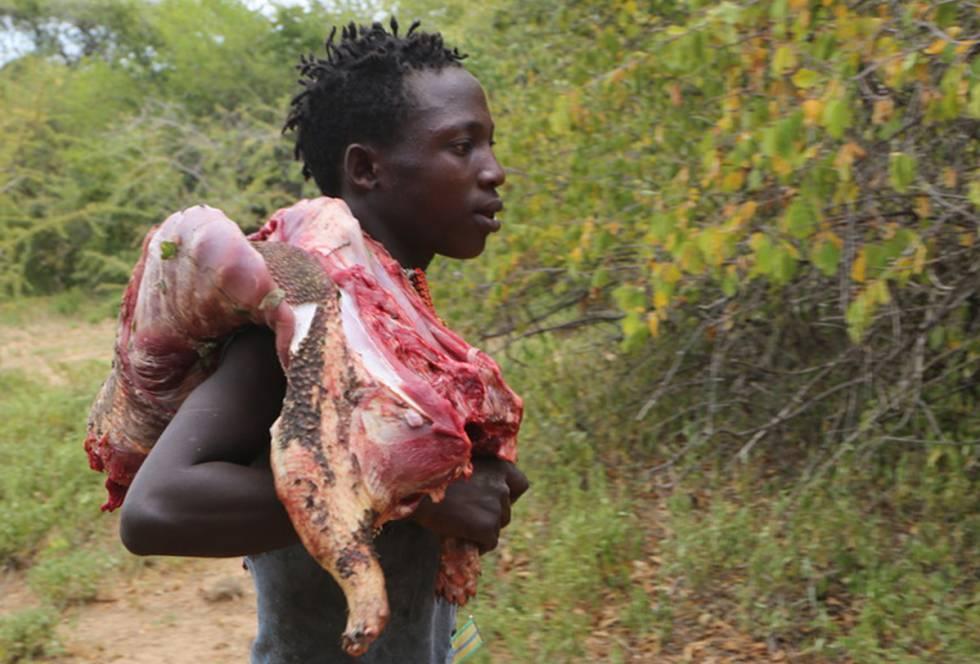 Un cazador hadza vuelve al campamento con el puercoespín que han cazado al hombro.