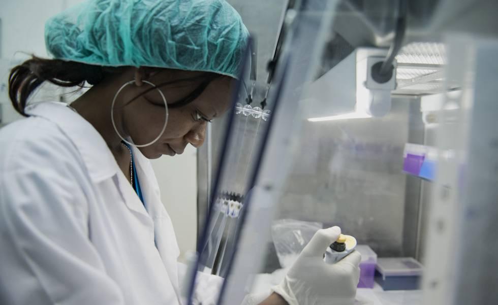 El Centro de Investigación de Manhica, financiado por AECID, mantiene un programa de investigación de la enfermedad de la malaria.