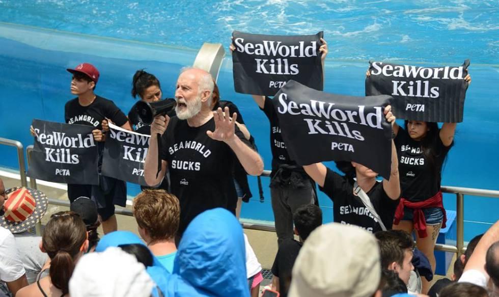 Resultado de imagen para alec baldwin delfines seaworld