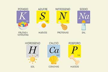 La mejor tabla peridica ilustrada para estudiar los elementos y la mejor tabla peridica ilustrada para estudiar los elementos y enterarse urtaz Gallery