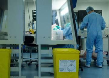 La terapia génica alcanza por fin al futuro
