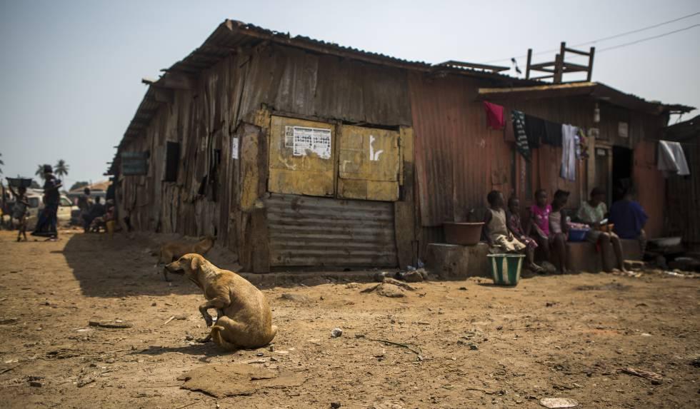 Un perro intenta ahuyentar las pulgas mientras unas niñas preparan comida sentadas en la puerta de sus chabolas.