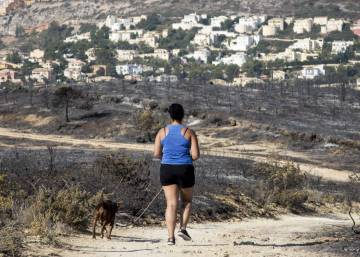 Valencia will ensure burnt land cannot be rezoned for construction