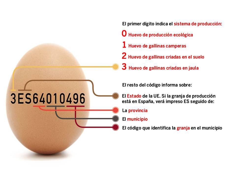 Guía definitiva para saber de dónde vienen los huevos y si pueden estar contaminados