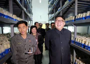 """Corea del Norte: desarrollar armas nucleares es """"la decisión correcta"""""""