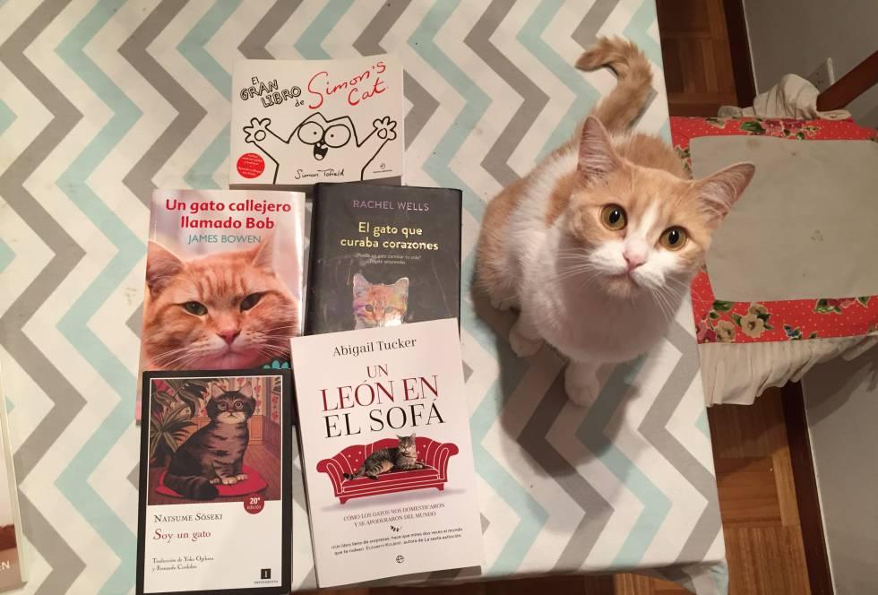 b9e48116a La lista de libros (de gatos) de este verano