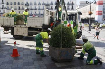 Planters are placed in Madrid's central Puerta del Sol.