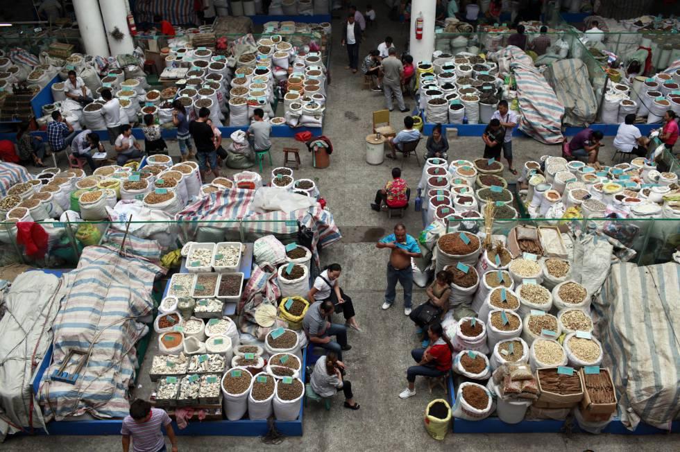 Mercado de medicina tradicional china, Bozhou. China.rn rn