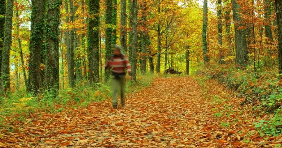 Equinoccio de otoño: ¿realmente se ha acabado el verano ...