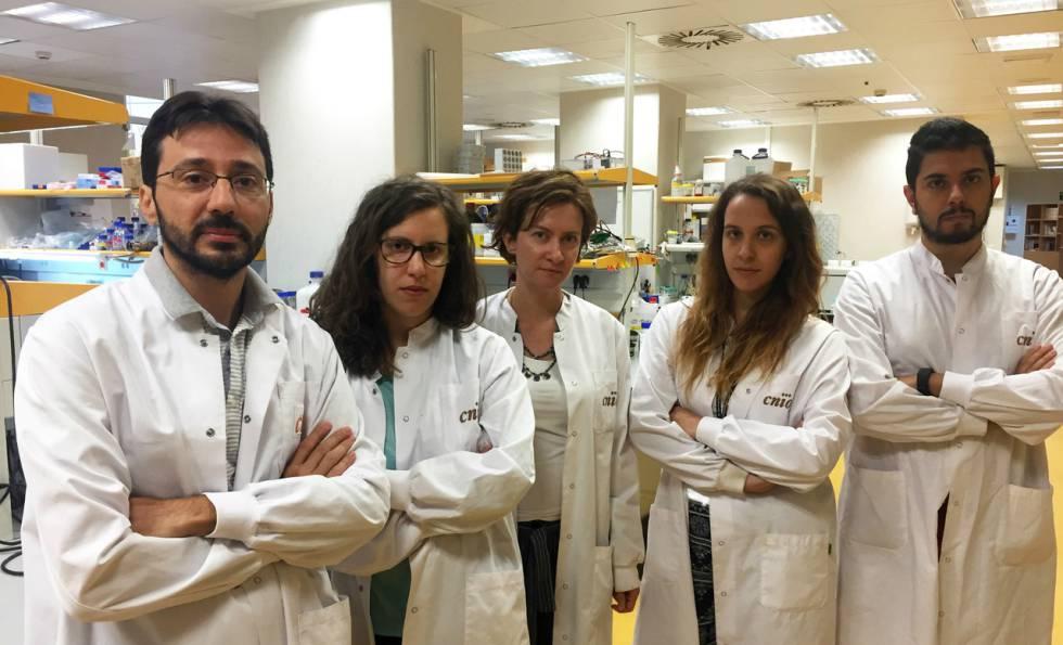 El grupo de Massimo Squatrito (izquierda), amenazado por el enredo legal.