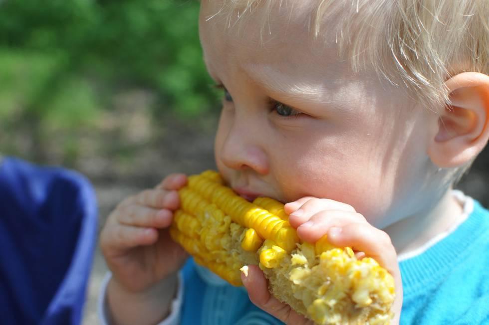 comidas saludables para niños mañosos
