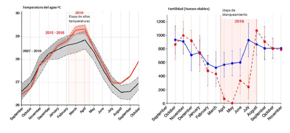 Gráficos de las temperaturas del agua y los huevos viables.