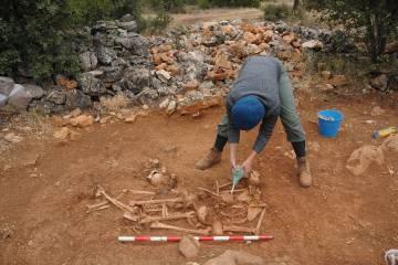 Trabajos arqueológicos en una fosa colectiva de Abánades en la campaña del CSIC en 2012.