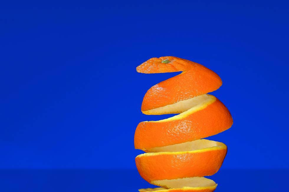 Cómo salvar un bosque con naranjas