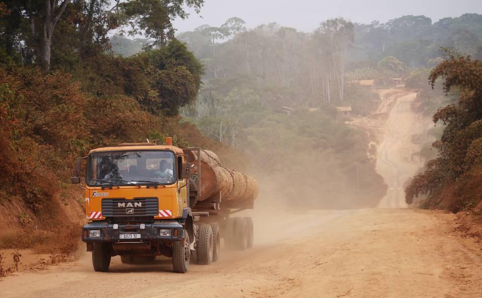 Las carreteras y caminos se adentran cada vez más en selvas como estas de Camerún.