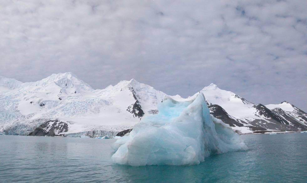Bahía Falsa de la Isla Livingston.