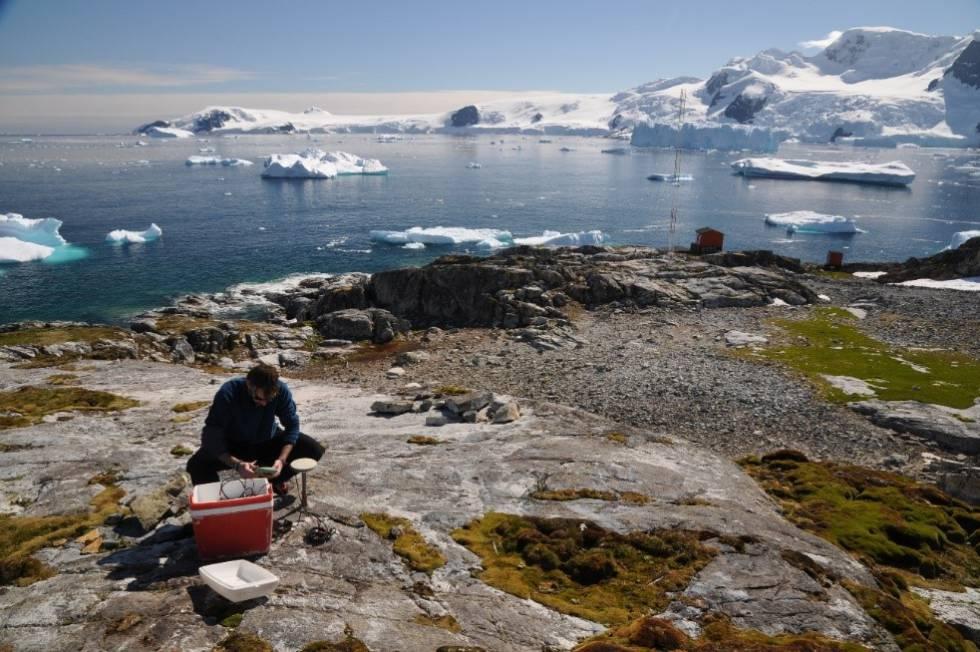 Investigador haciendo trabajo de campo durante la XXX Campaña Polar Antártica.