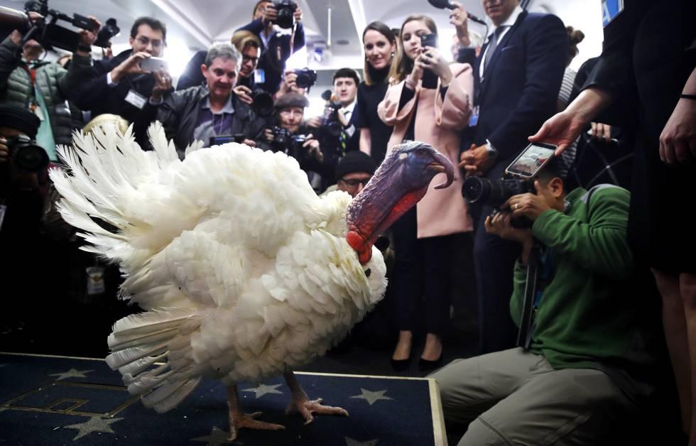 Día De Acción De Gracias Qué Es Thanksgiving Estilo El País