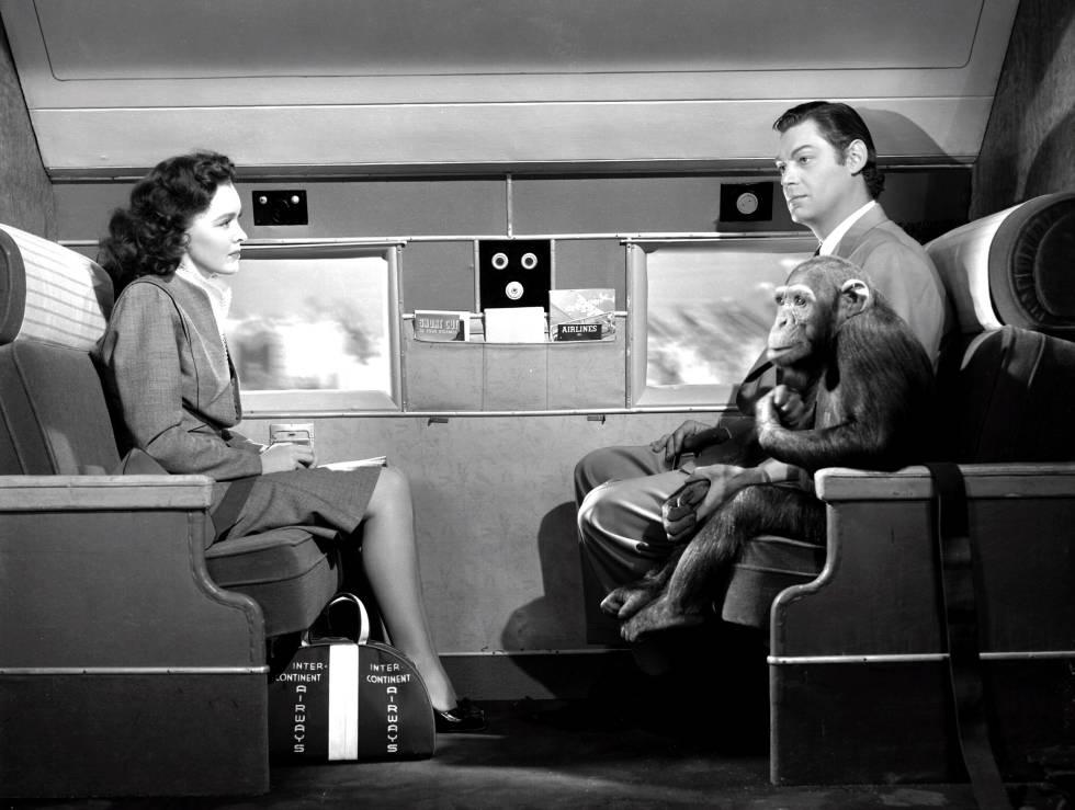 Maureen O'Sullivan, Johnny Weissmuller y Chita (el mono) viviendo aventuras en un avión en la película 'Tarzán contra el mundo' (1942).