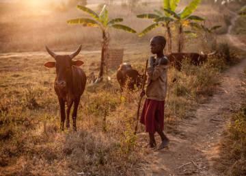 Batwa, los míseros entre los pobres